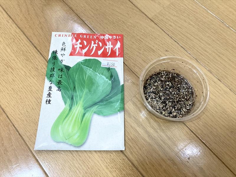 チンゲンサイをバーミキュライトに播種